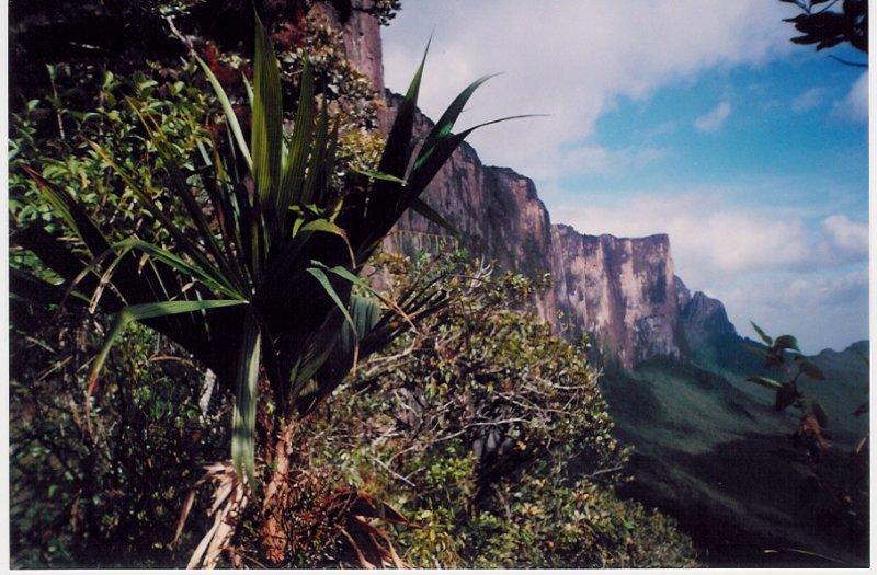 foto9_venezuela_gransabana2